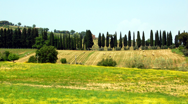 areas in tuscany