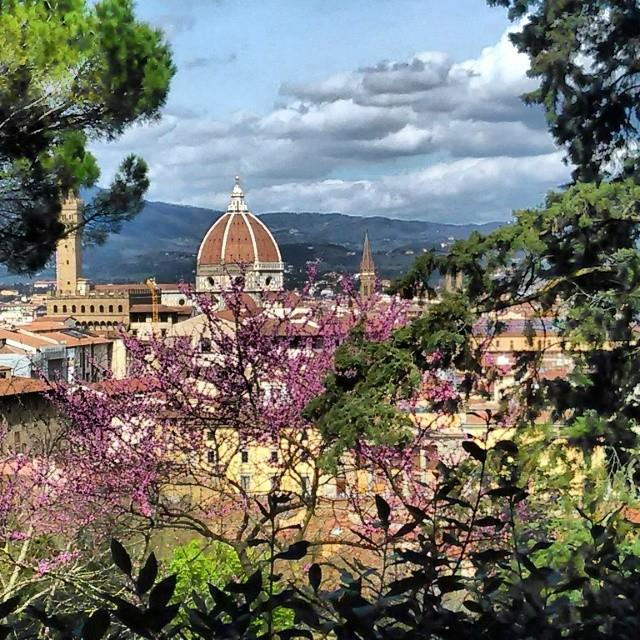 Things to do in Florence in Spring